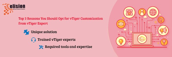 vTiger Customization | Expert vTiger Developers | Elisiontec